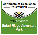 Team Safari Won the Certificate of Excellence Award